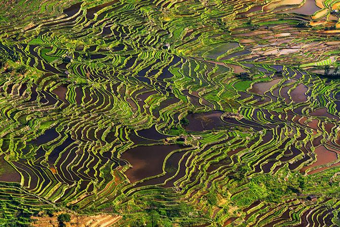 Чудо природы — река Гейзерная (10 фото)